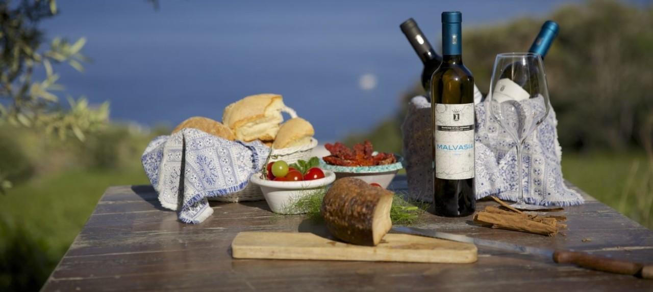 Visita guidata a cantine vinicole